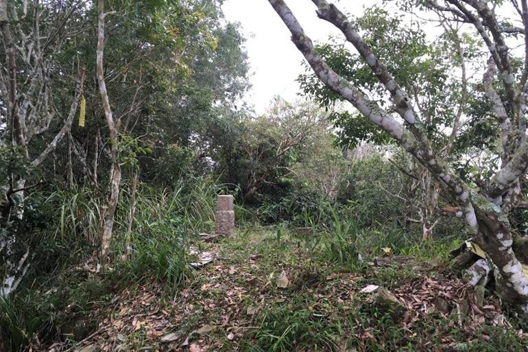 Dayuan Mountain - 大原山 Triangulation stone