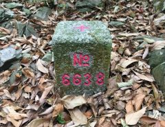 Triangulation stone for WenDingShan – 文丁山