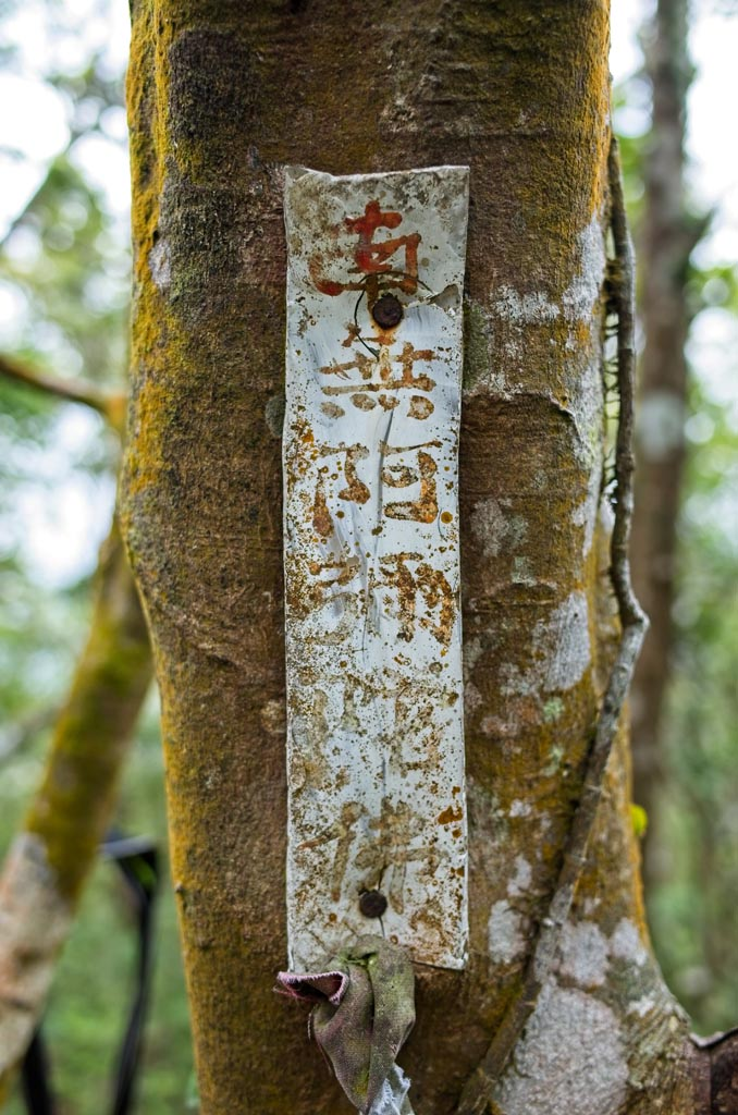 Religious writing on metal strip attached to tree