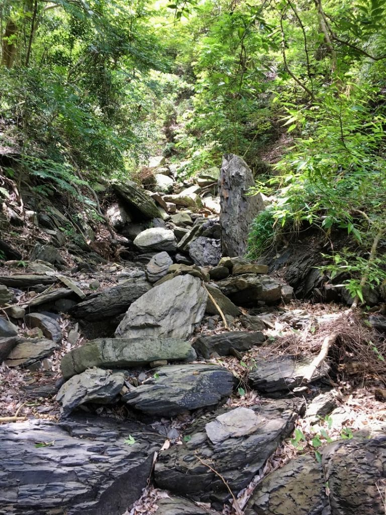 A dry rocky stream bed