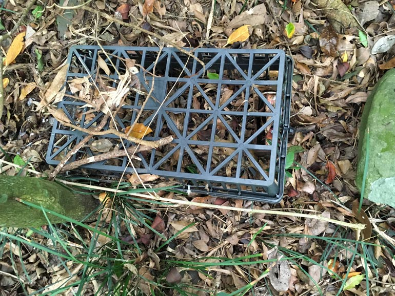 Plastic rat trap lying on the ground