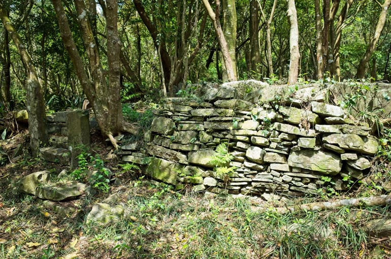 Stone wall foundation - trees behind