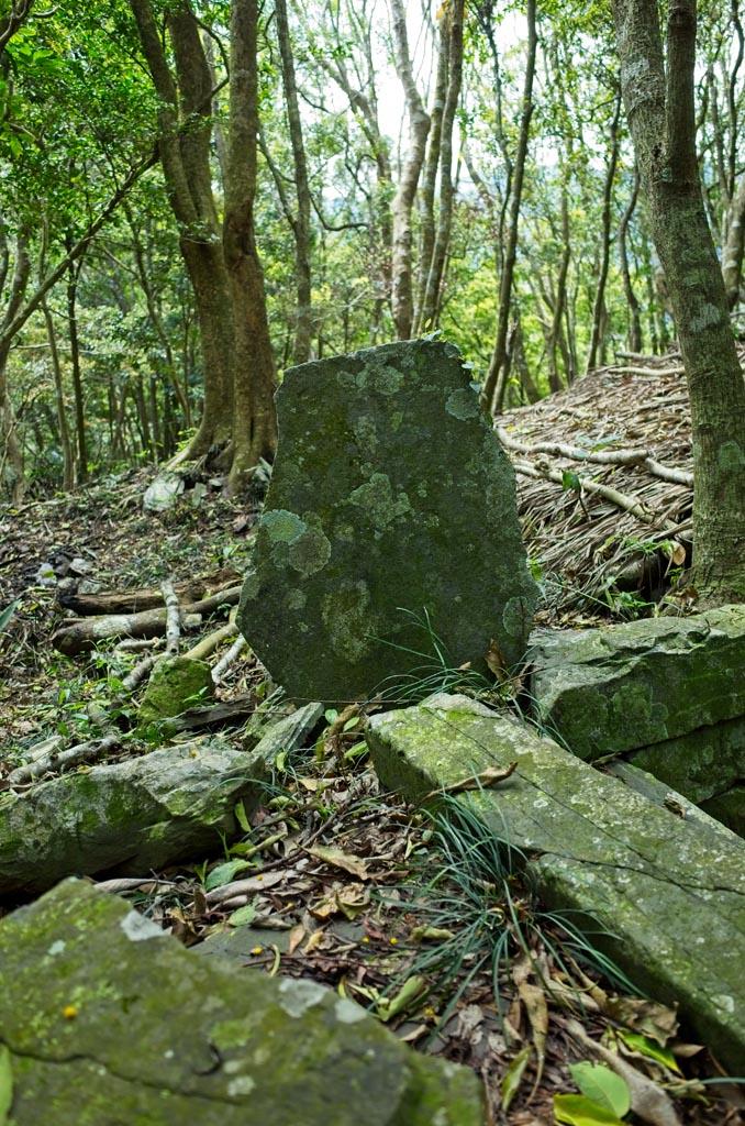 Corner of stone foundation with thin, flat stone sticking up