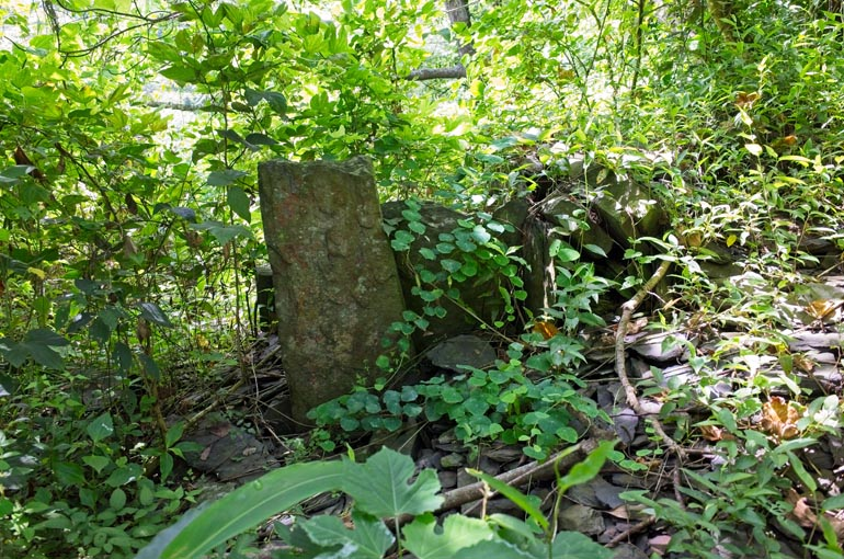 Large flat stone sticking up next to stacked stone wall covered with vines
