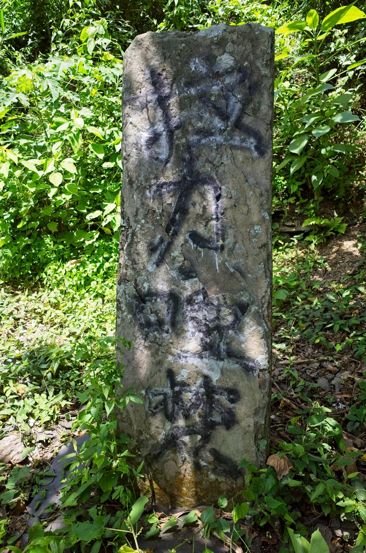 Tall large thin stone standing up with a name spray painted on it