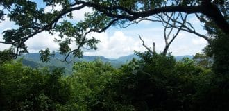 View from the 門山 - 虱母山- ShiMenShan Peak - Trees in foreground - mountains beyond
