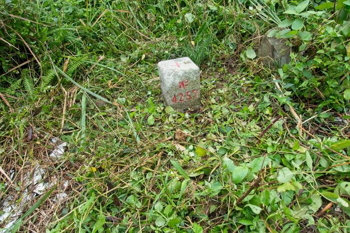 CaoBuHouShan 草埔後山 Triangulation Marker - No 4257 written on it - Grass cut around it