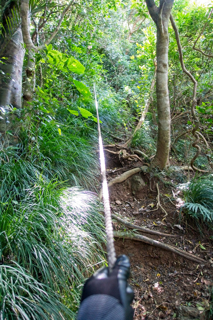 Steep trail with rope guide