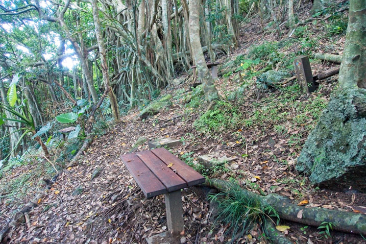 Wooden bench on side of mountain next to trail