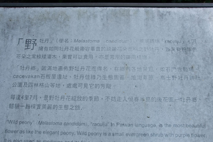 Metal sign with Chinese that explains about the local Wild Peony flower