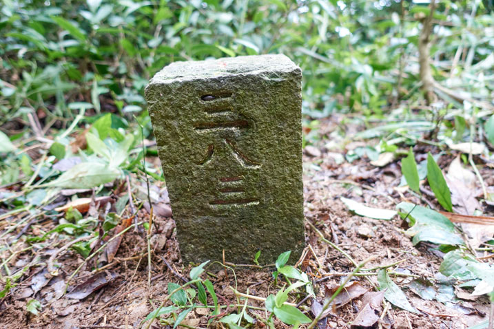 "PenMaoLiShan NanFeng - 盆貿里山南峰 peak marker - Chinese characters saying ""383"""