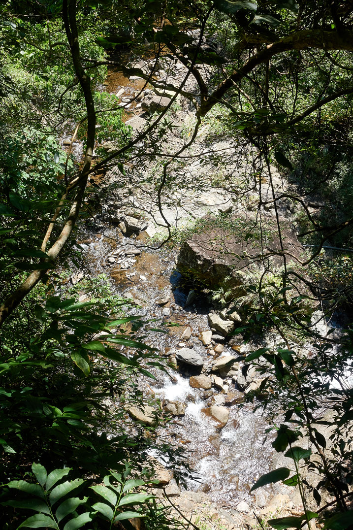 Rocky stream viewed from above - trees around creating a tunnel affect when viewed