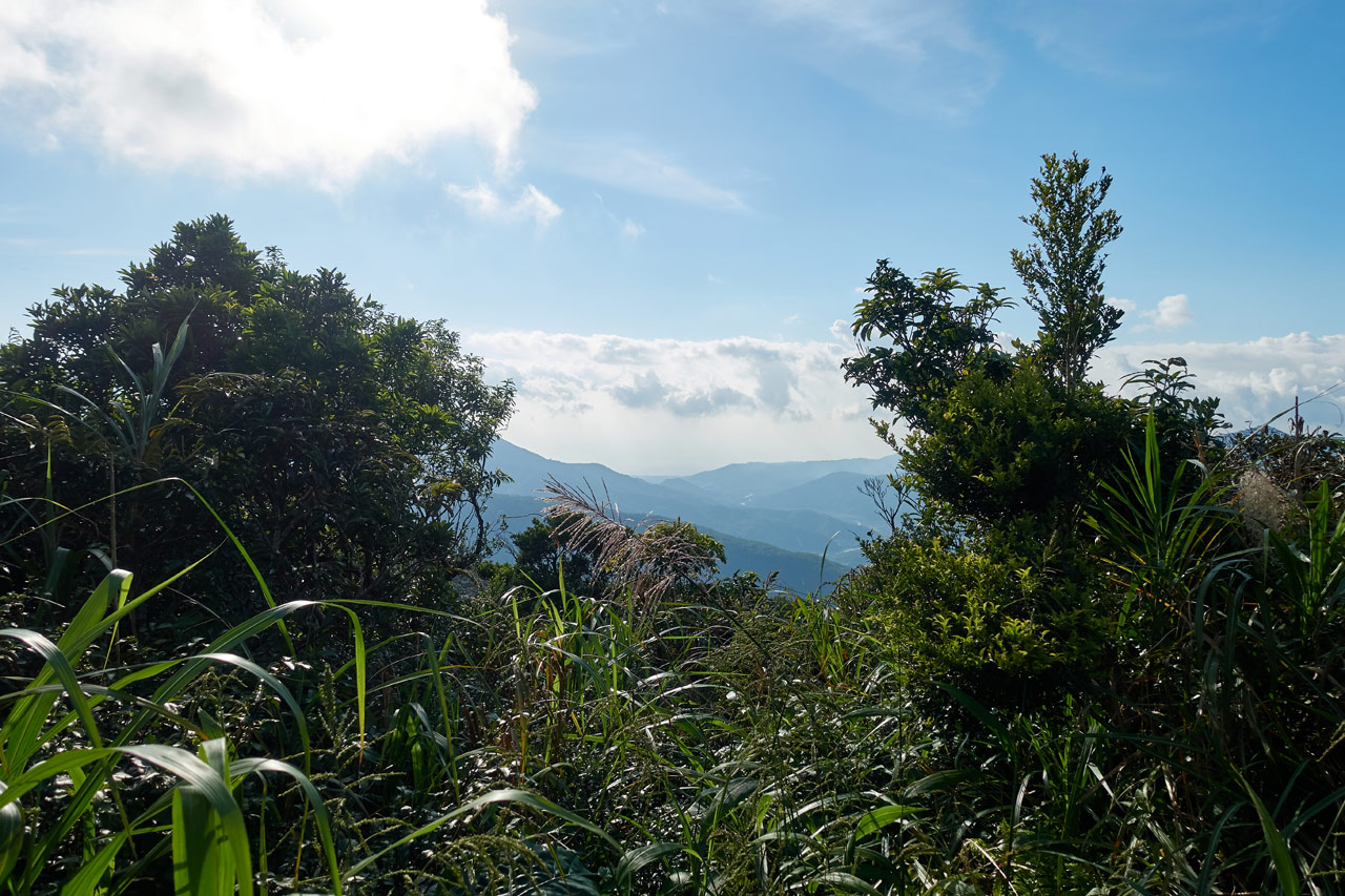 Mountains in the distance - ocean barely visable - blue skies and white clouds above - trees and plants in front