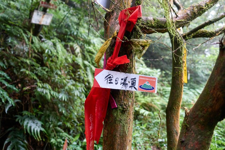 Trail ribbons and a sign attached to a tree