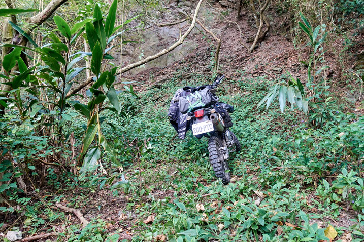 Motorcycle parked next to jungle mountainside