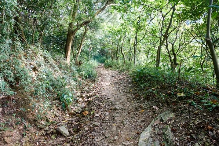 Mountain dirt road in Taiwan