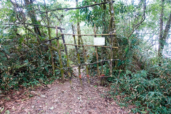Gate made out of tree limbs with sign on it in forest