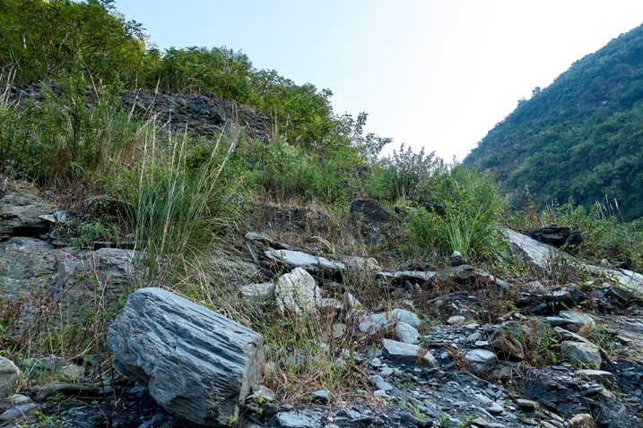 Riverbed bank - rocky and overgrown - ZuMuShan 足母山