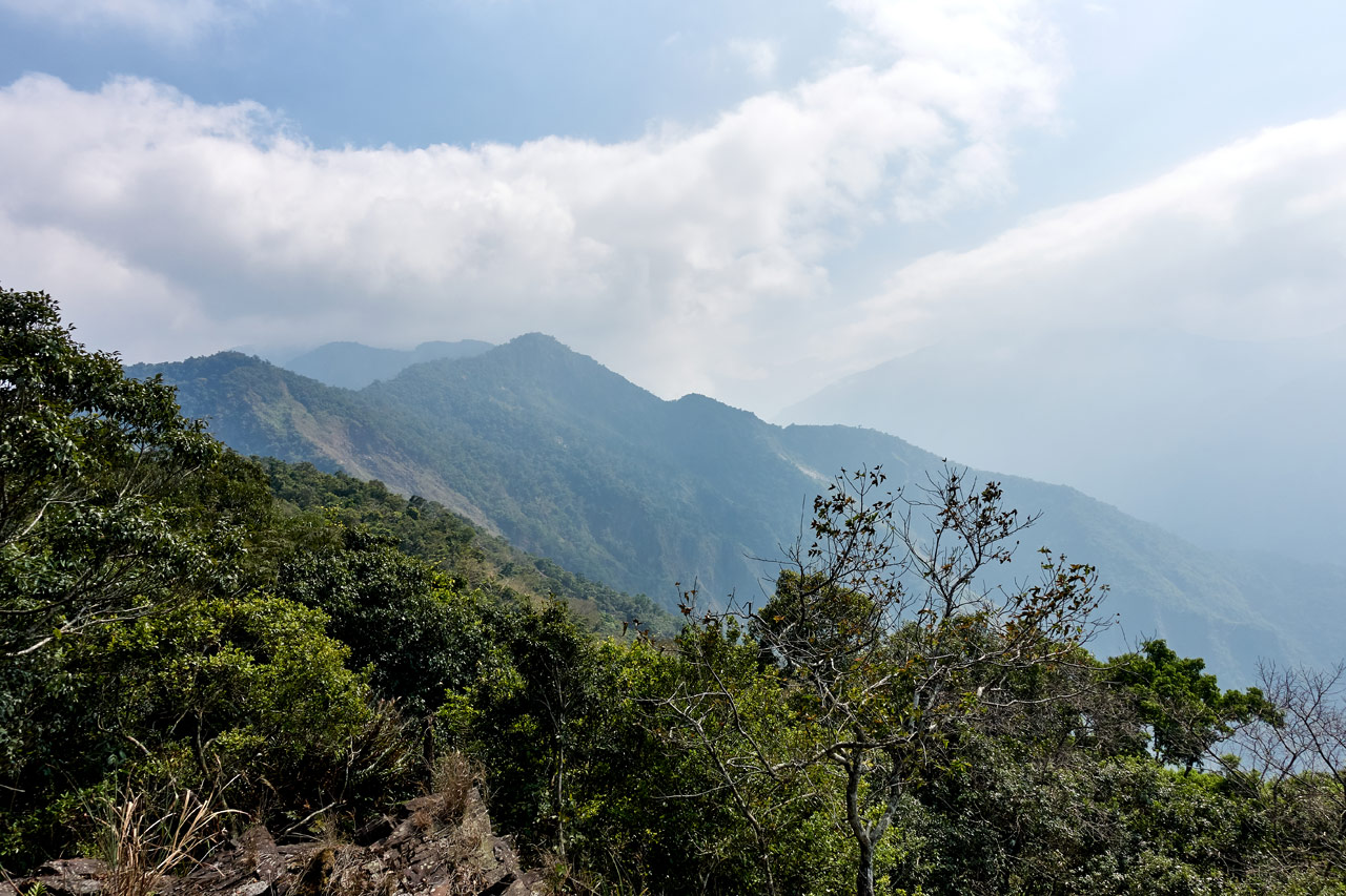 Panoramic mountain picture - trees in foreground - ZuMuShan 足母山 trail