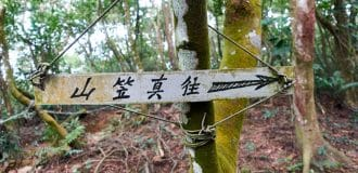 Sign attached to tree