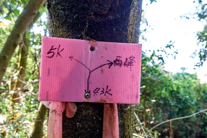 A pink sign attached to a tree - WeiLiaoShan Hike – 尾寮山