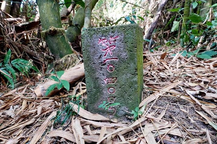 Weiliaoshan West Peak triangulation stone - WeiLiaoShan West peak – 尾寮山西峰