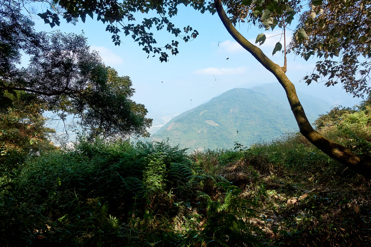 Mountains in distance - grass and trees in foreground - WeiLiaoShan Hike – 尾寮山