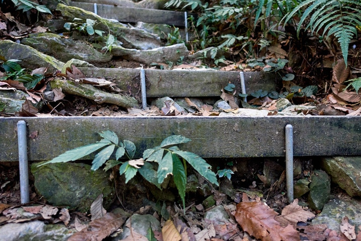 Closeup of makeshift stairs on mountain trail - WeiLiaoShan Hike – 尾寮山