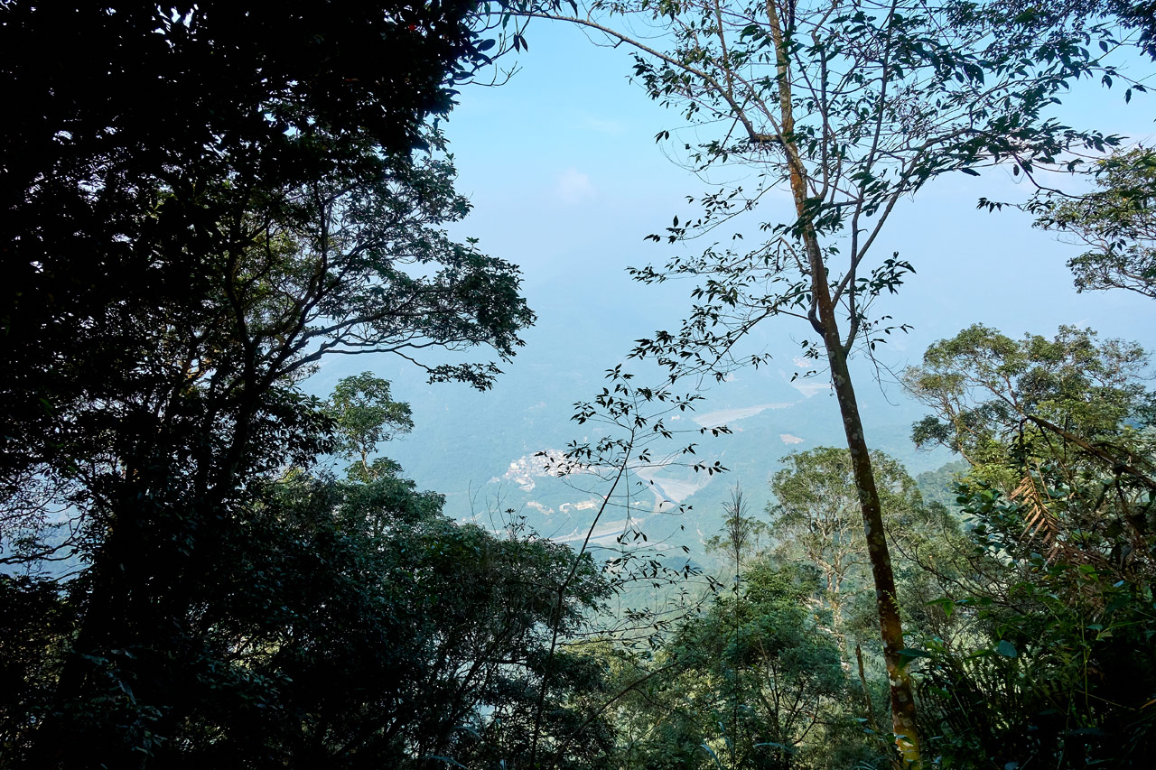View of village below with trees blocking the view - WeiLiaoShan 尾寮山 trail