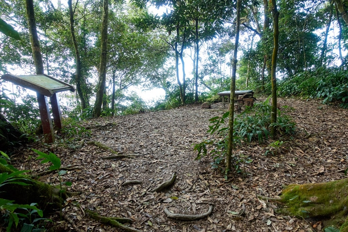 An open area with trees around the perimeter - a table towards the back - WeiLiaoShan 尾寮山 trail