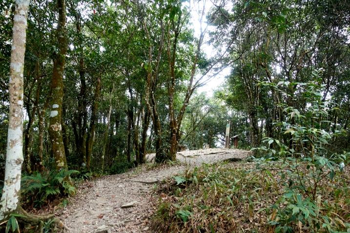 WeiLiaoShan 尾寮山 Peak