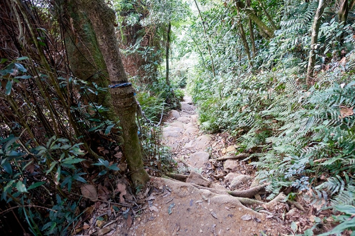 Looking down a rocky trail - rope on the left - WeiLiaoShan 尾寮山 trail