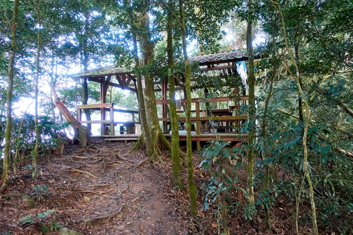 Covered wooden rest area at the end of a trail - trees all around - WeiLiaoShan 尾寮山 trail