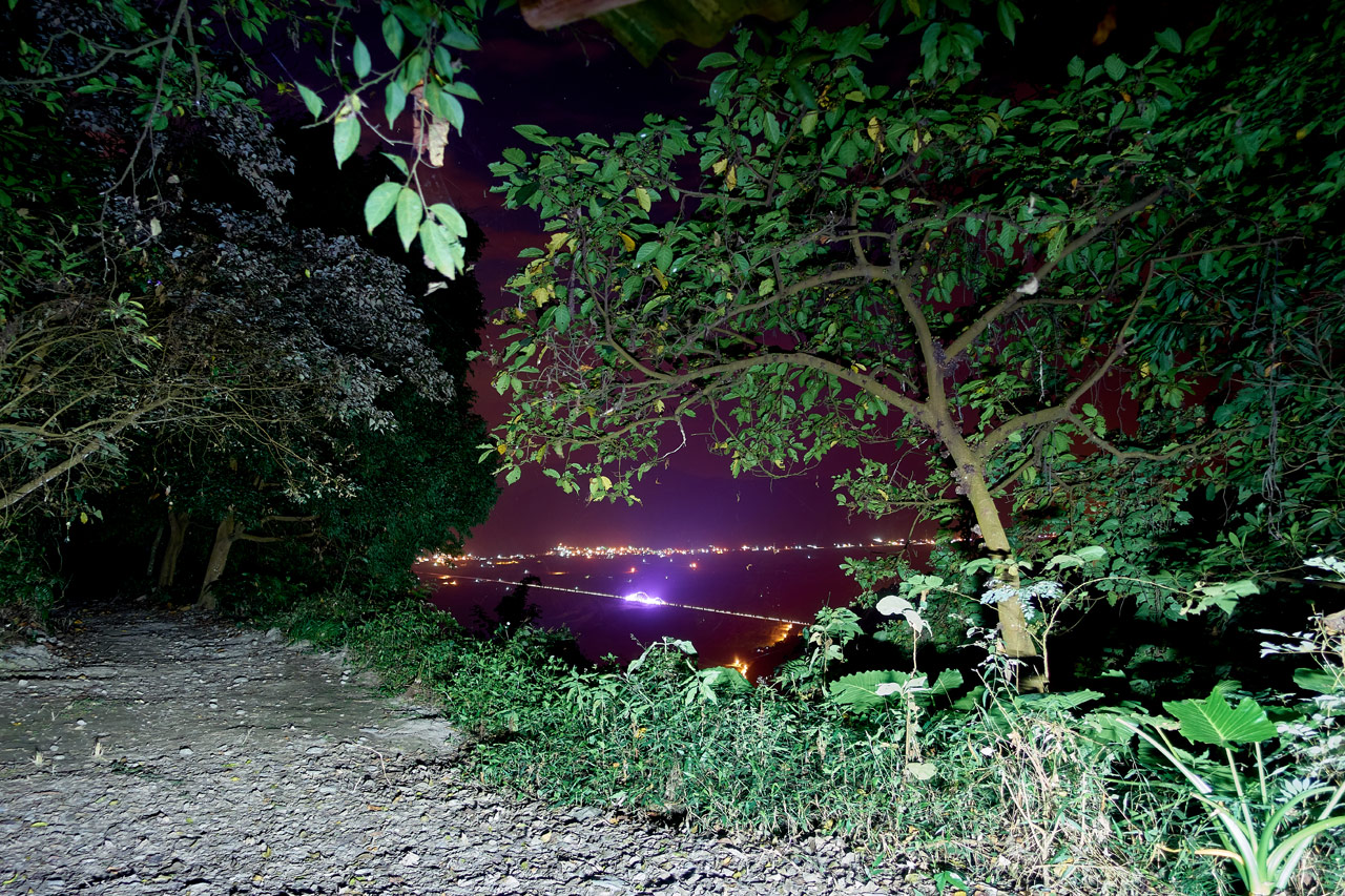 City and colorful bridge at night in distance - trees and trail in foreground - WeiLiaoShan 尾寮山 trail