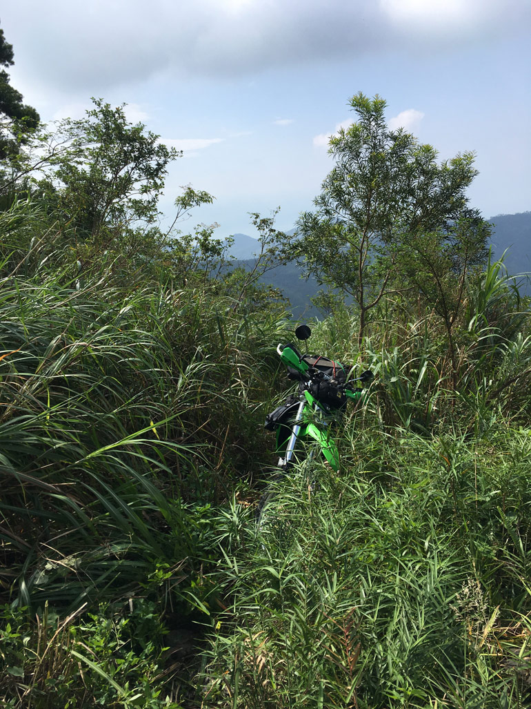Overgrown trail with motorcycle in middle - BeiHuLuShan 北湖呂山