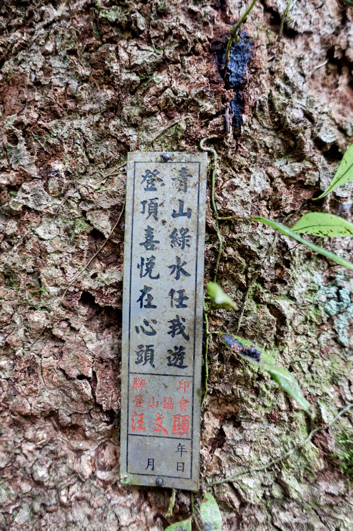 Small metal sign with Chinese writing nailed to a tree - BeiHuLuShan Peak 北湖呂山