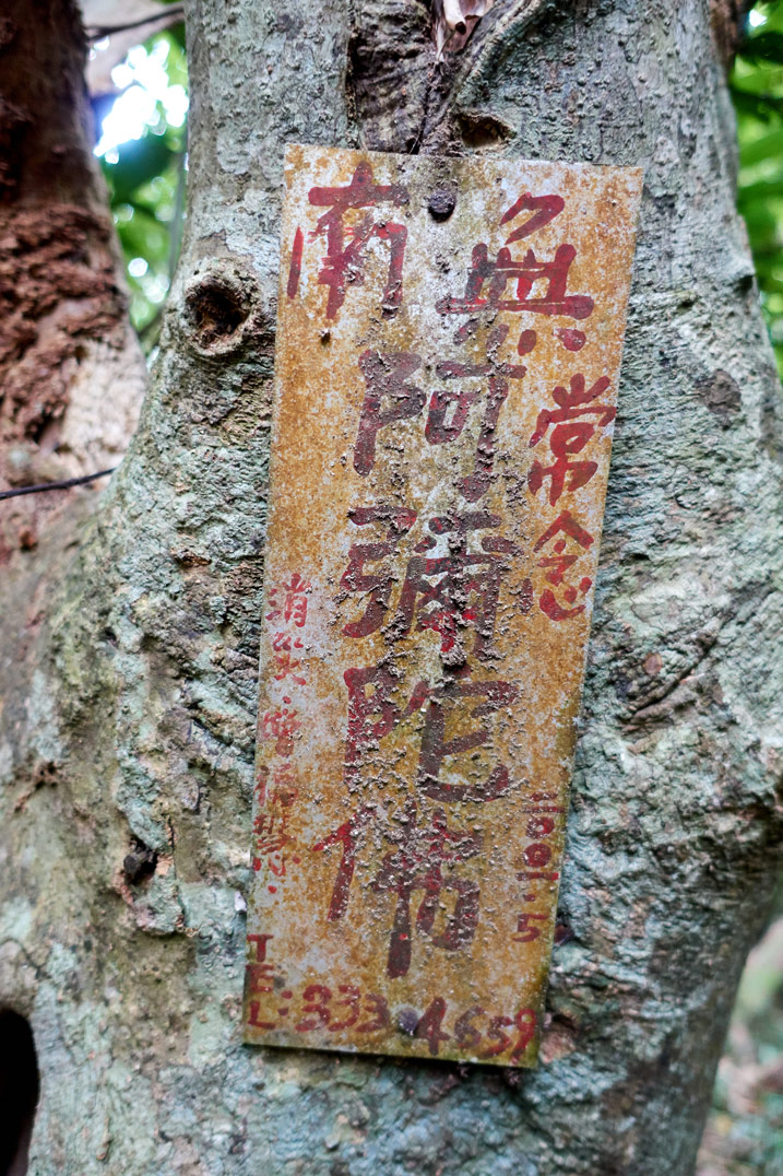 Old, faded dirty sign attached to tree with Chinese writing on it - BeiHuLuShan Peak 北湖呂山
