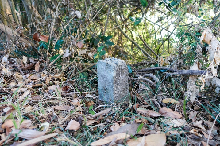 Stone pillar sticking out of the ground - 旗月縱走