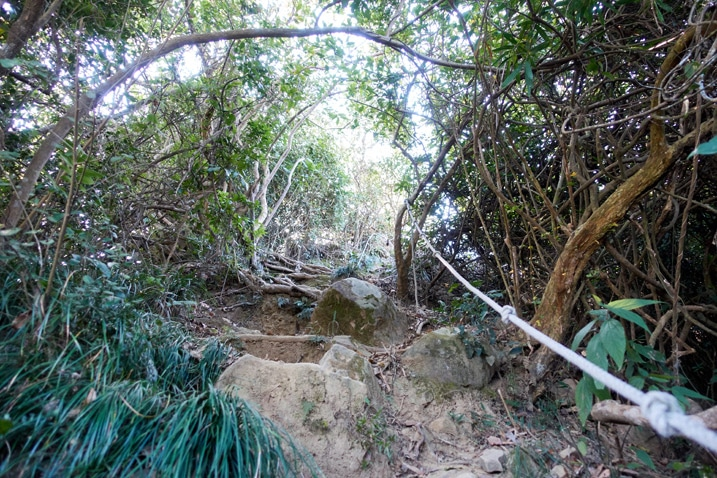 Trail going up steep rocky trail with rope - trees around - 旗月縱走