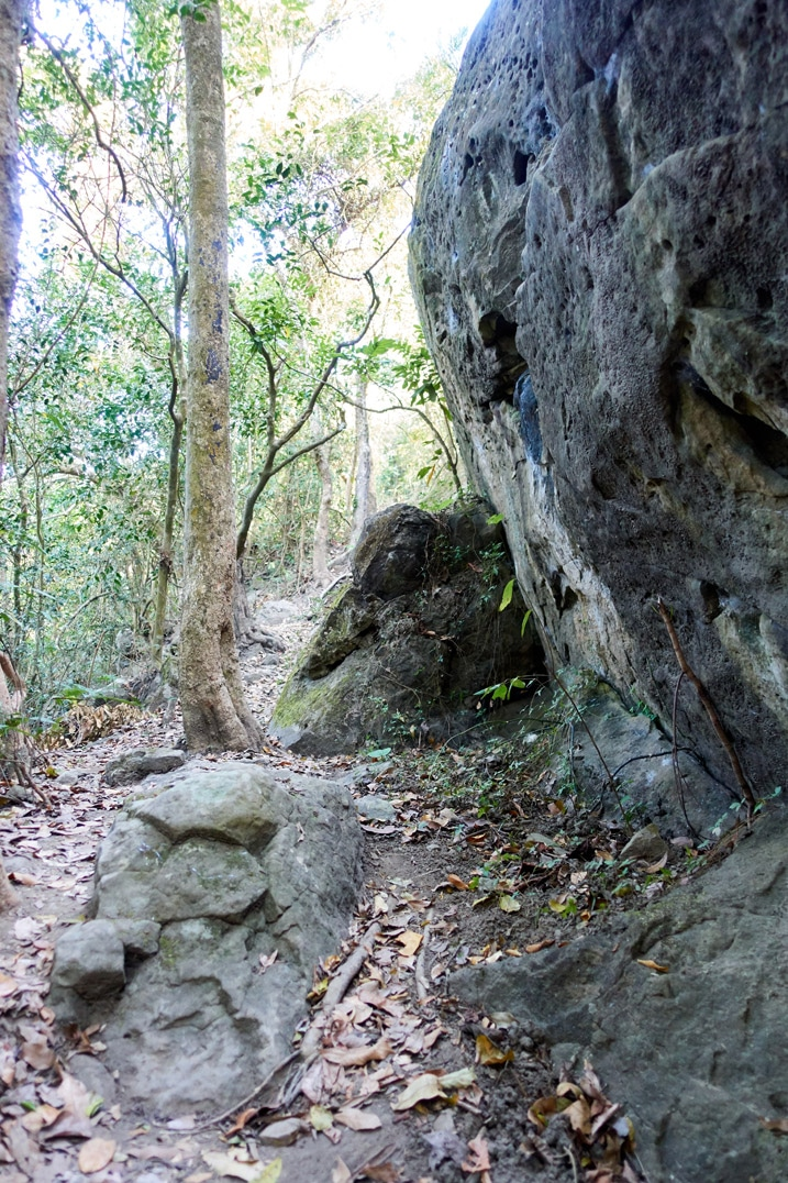 Large boulder with trail passing next to it - 旗月縱走