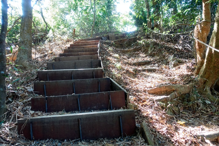 Mountain stairs going up the mountain - 靈山步道 - 旗月縱走