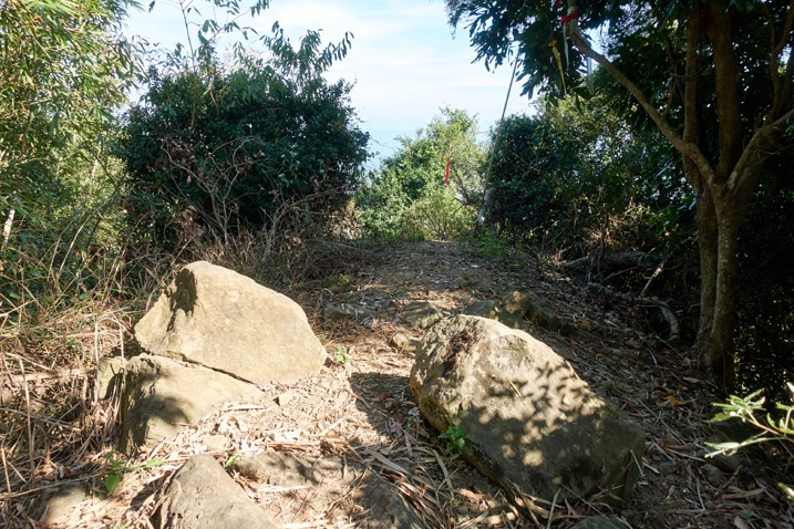 Looking at 靈山 - open space with rocks and trees - 旗月縱走