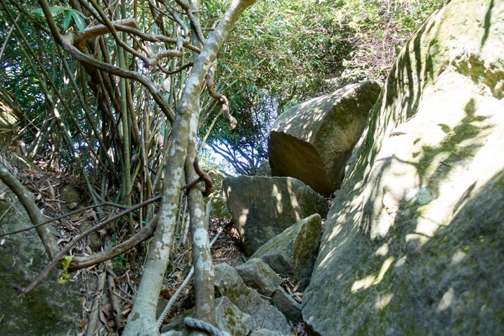 Rocky climb of a trail with rope - 旗月縱走