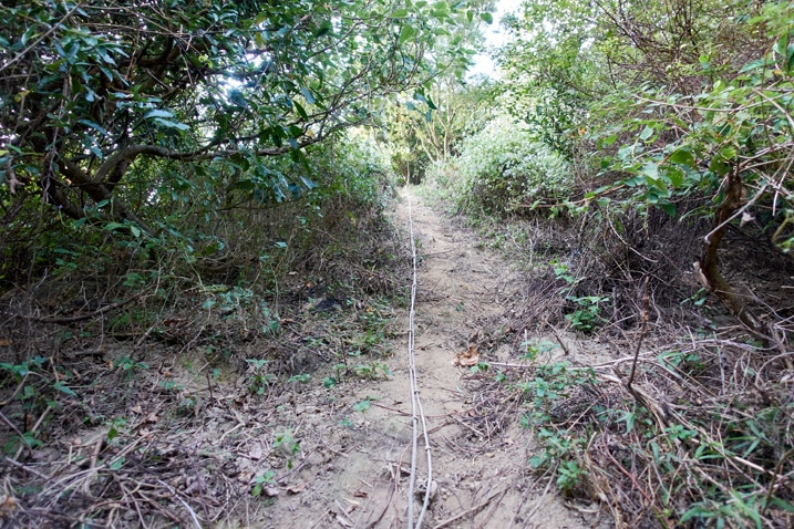 Steep uphill trail with rope - 旗月縱走