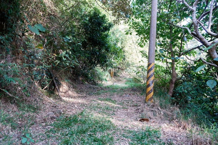 Mountain dirt road - telephone pole - 旗月縱走