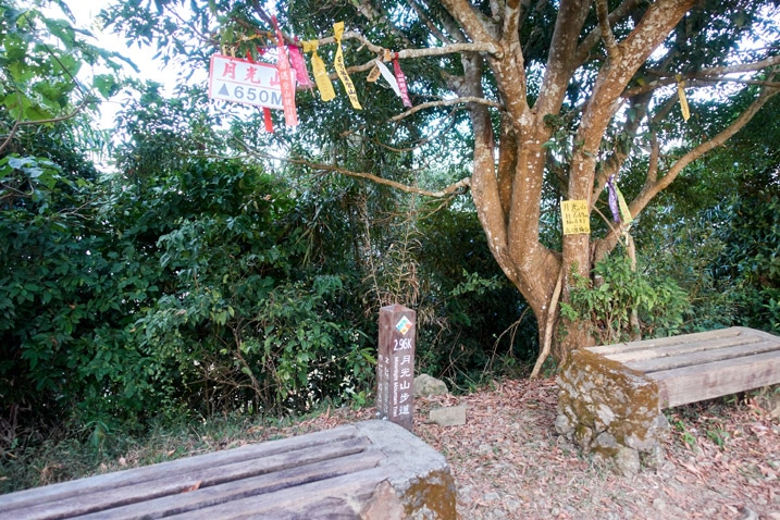 Bench and tree with many ribbons and sign hanging from it - 旗月縱走 - 月光山
