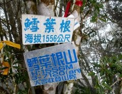 鱈葉根山 - XueYeGenShan featured image - two signs attached to tree