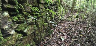 Stone wall in forest on the trail to Wangzishan-網子山-Minghaishashan-鳴海下山-Minghaishan-鳴海山
