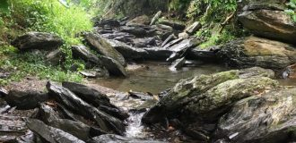 Rocky stream in mountains