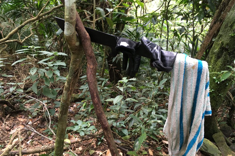 Looking at machete stuck on tree with towel hanging from it
